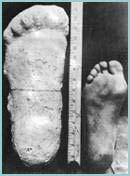 huellas de pie grande