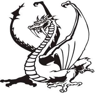 todo sobre los dragones