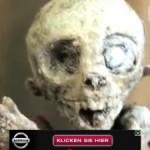 descubren bebe extraterrestre en mexico