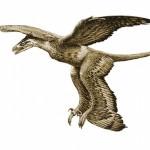 dinosaurio-cuatro-alas