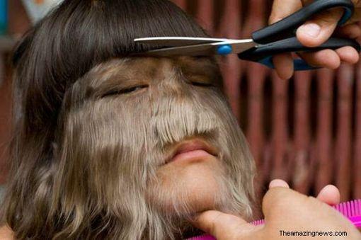 Mejor la máscara para los cabellos del aloe