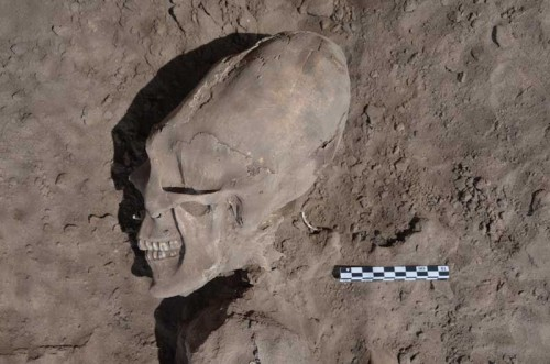 Misterioso craneo descubierto en Sonora