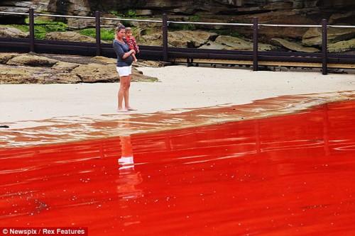 Impresionante marea roja en Australia