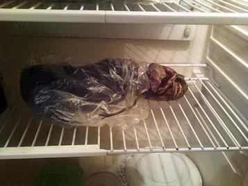 Un extraterrestre en una heladera