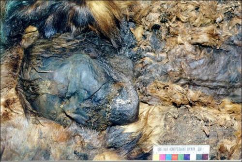 El misterio de las momias persas