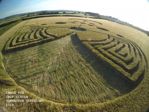 circulos en los cultivos