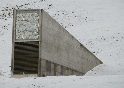 Svalbard, la gran esperanza botánica de la humanidad