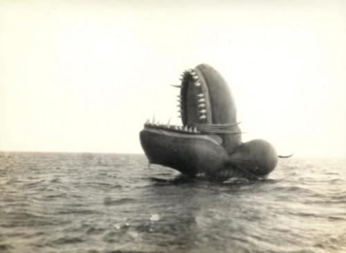 El monstruo marino de Nantucket