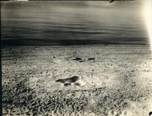huella del monstruo marino de Nantucket
