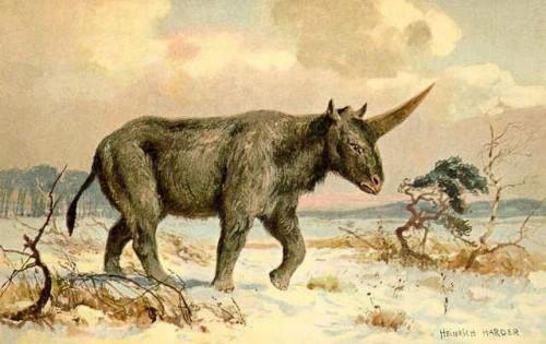 Unicornios Prehistóricos
