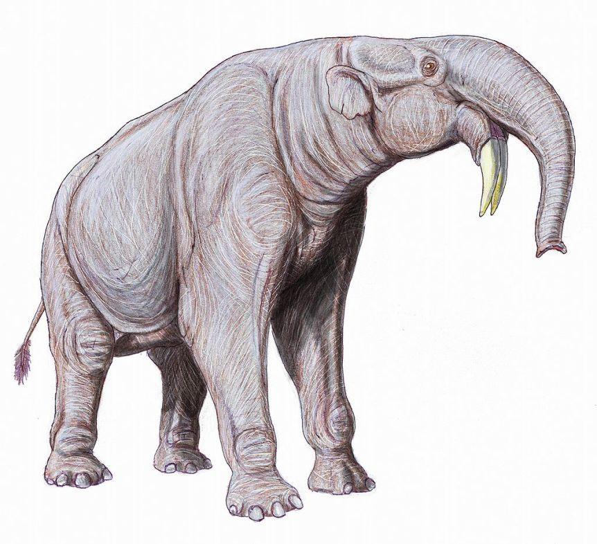 Elefantes prehistóricos